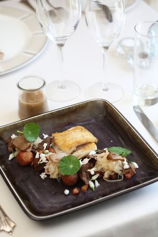 Roast brill, sauerkraut, hazelnut gnocchi & local foraged mushrooms with fermented rye soup