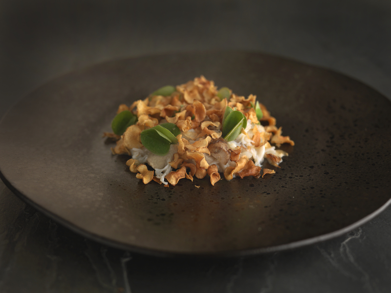 Crab, Jerusalem Artichoke and Oca Leaf