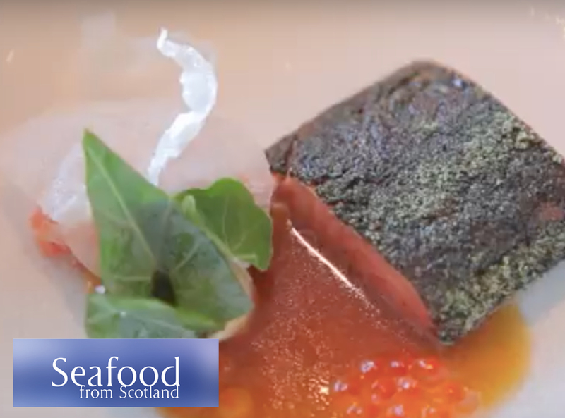 Seaweed confit loch Etive trout loin, belly tartare, smoked mussel emulsion and ponzu dressing - Serves 6