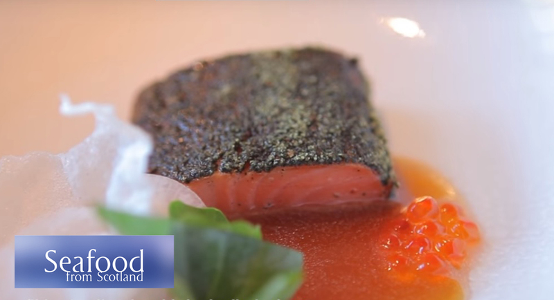 Seaweed confit loch Etive trout loin, belly tartare, smoked mussel emulsion and ponzu dressing - Serves 6 - 2