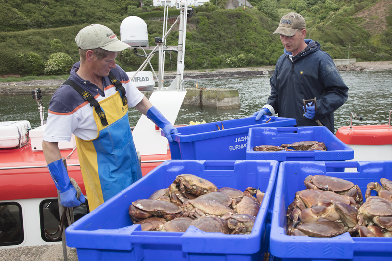 Leading Chefs visit Scotland's East Coast for Spectacular Seafood Journey - 13