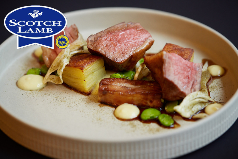 Roasted Scotch Lamb rump, slow cooked belly with potato & fennel terrine - 5