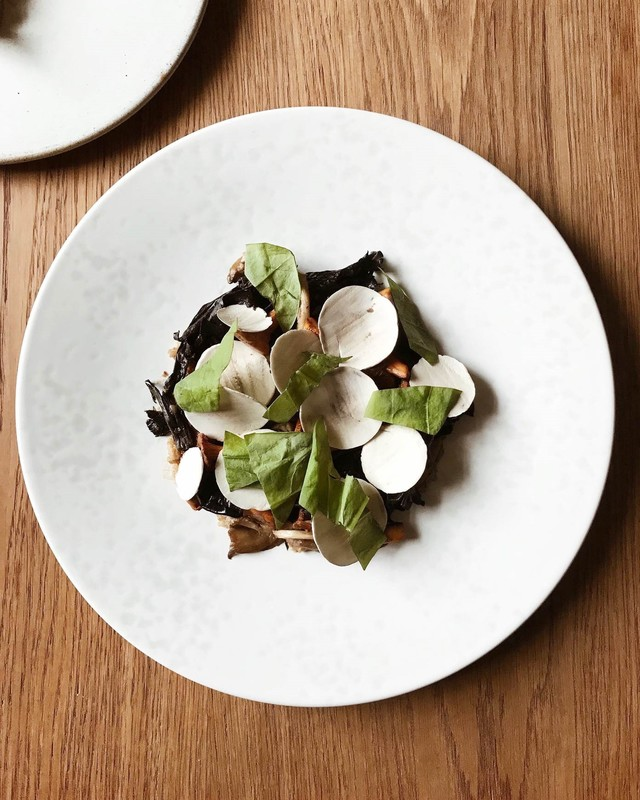 Mushrooms, fermented barley, caramelised yogurt by Leandro Carreira