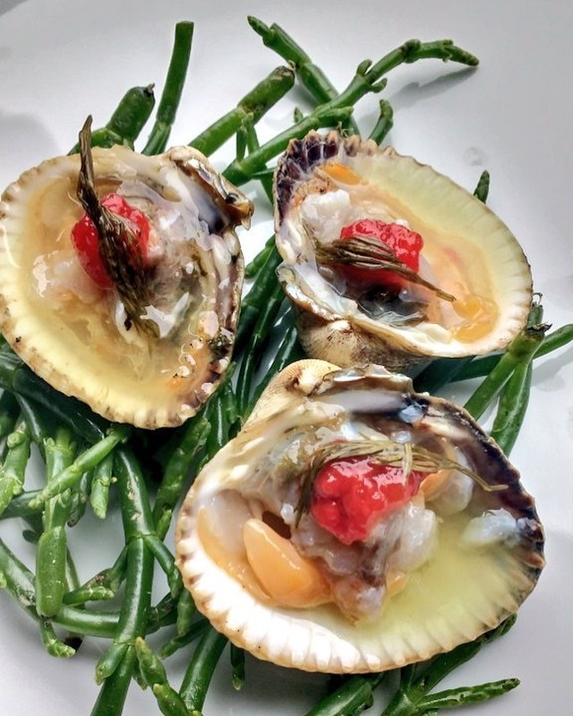 Raw cockles, absinthe,lime, pickled red Chile , samphire