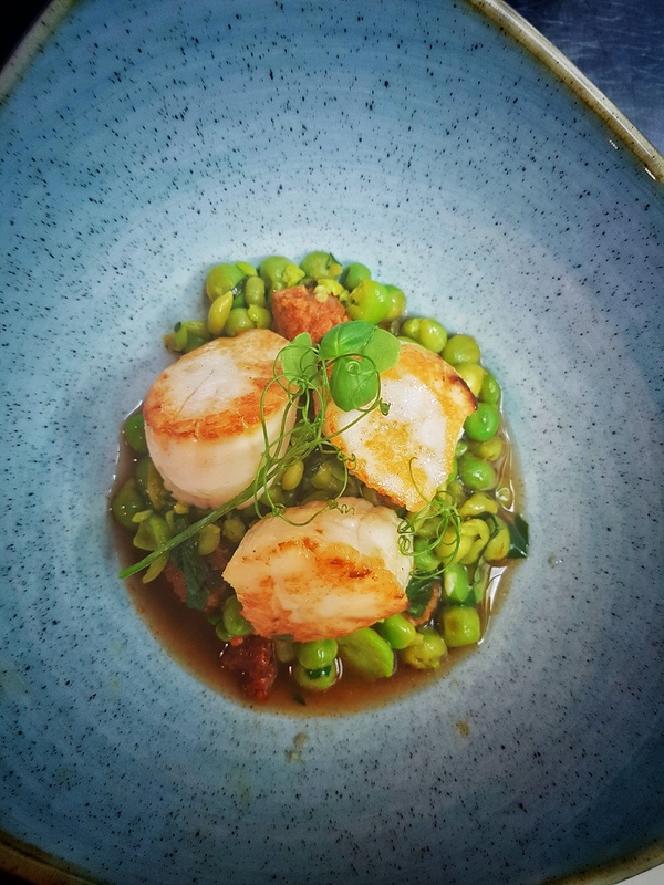 Roast scallops, peas, broad beans, chorizo, roast chicken broth