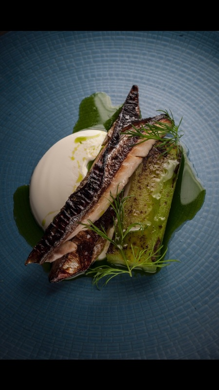 Stunning mackerel, pickled and torched