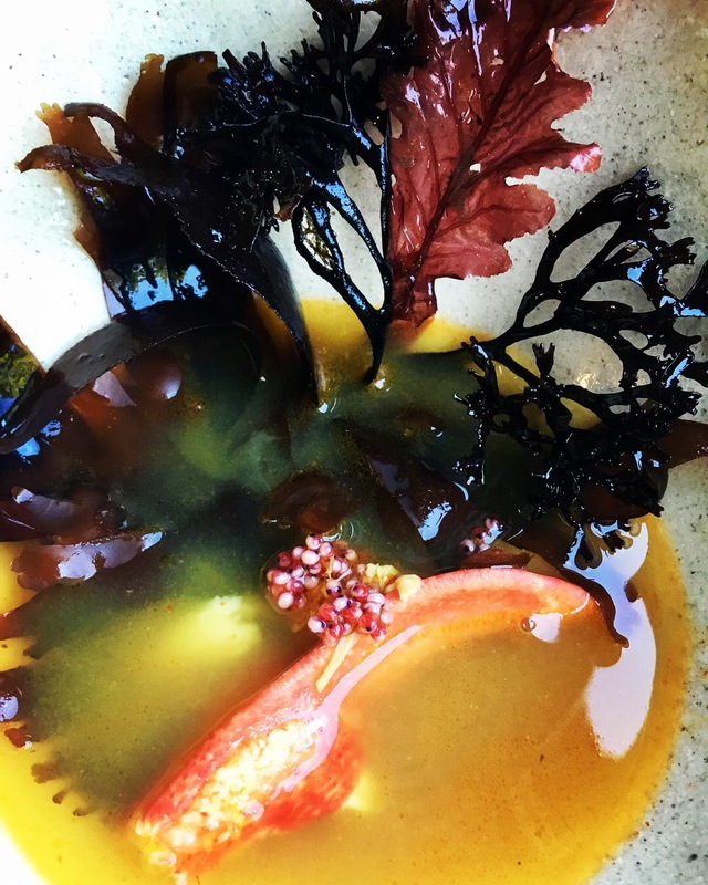 Lobster seaweeds broth