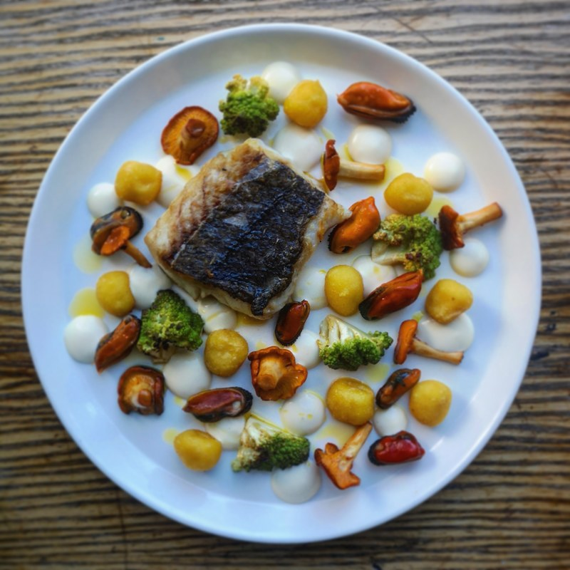 Pan fried hake, crispy gnocchi, buttered mussels, girroles and romenesco, lemon and mussel emulsion and truffle oil.