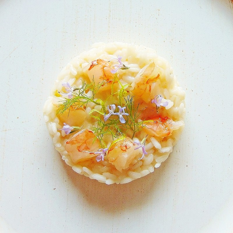 Carnaroli rice / lime zeist / rosemary flowers / raw shrimp / wild fennel