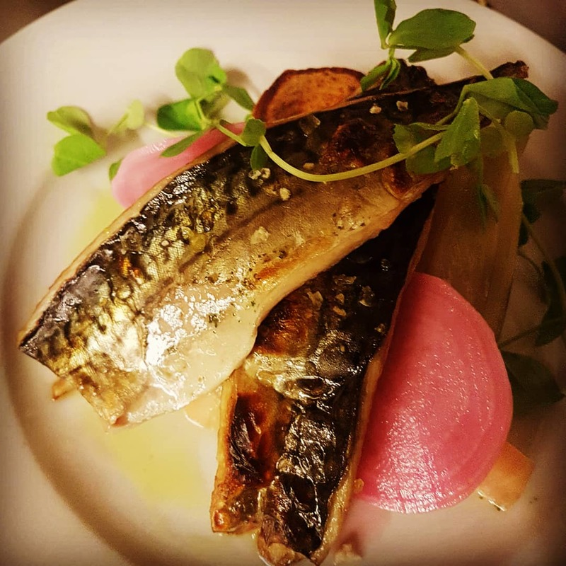 Quite proud of this Mackerel dish tonight. Pushing the limitations of this tiny pub kitchen on a busy night. Pickled and roasted candy beetroot, fondant sweet potato and fennel. With a sprinkle of pea shoots and a squirt of rocket oil.  .