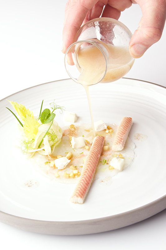 Tenderised langoustine with pickled cellery, goat's cheese and star anise oil