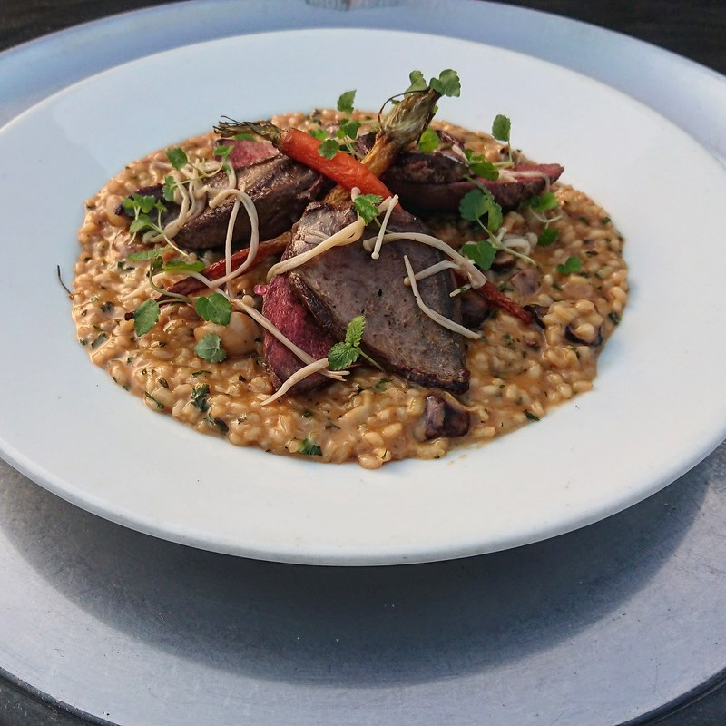 Seared Wood pigeon ° wild mushroom and game stock risotto ° confit carrot ° Black pudding