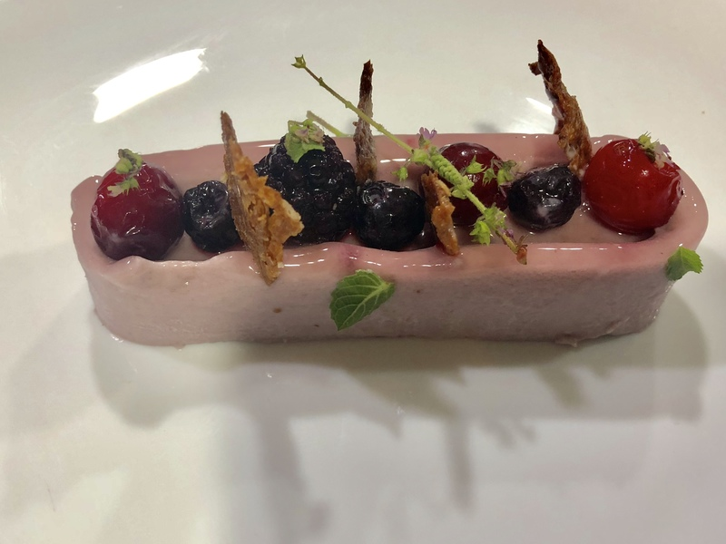 Mixed Berry Panna Cotta,Milk Crisp