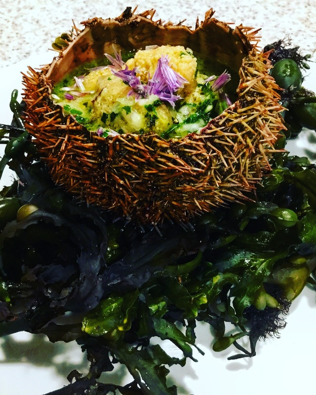 Sea urchin in mint salsa verde