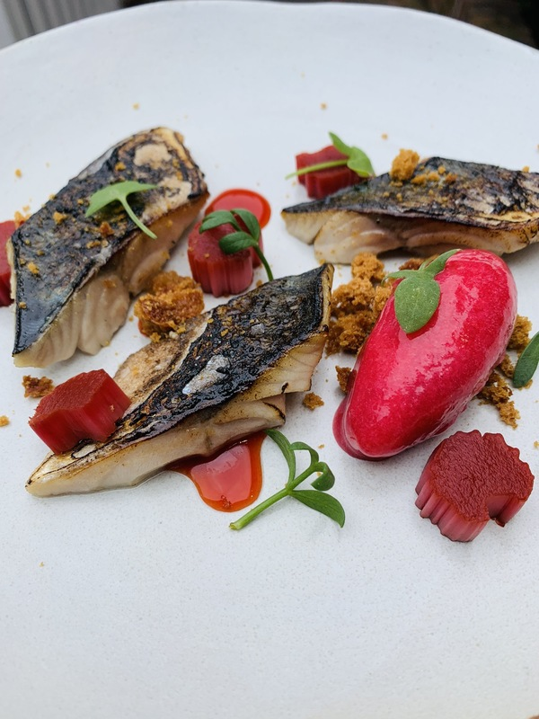 Torched mackerel, forced Yorkshire rhubarb, pain d'epice