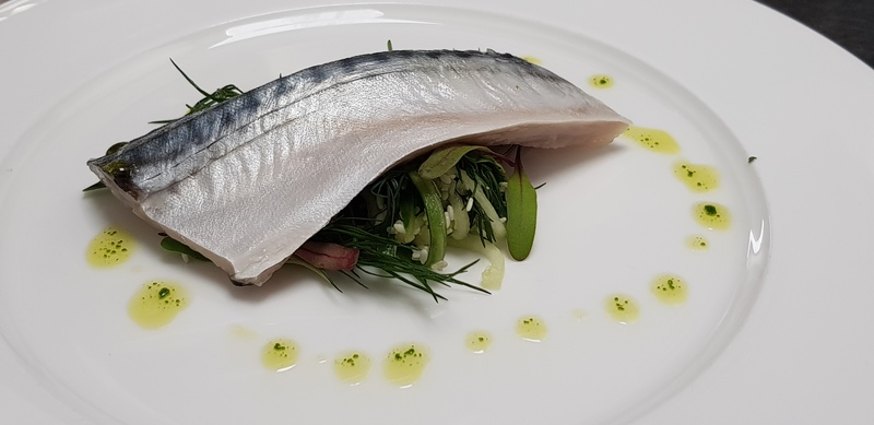 Pickled mackerel, herb oil  and cucumber
