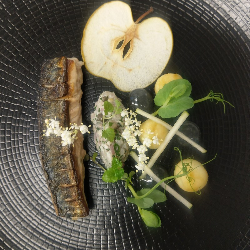 North sea Mackrel, green apple, elderflower, Mackrel tartare