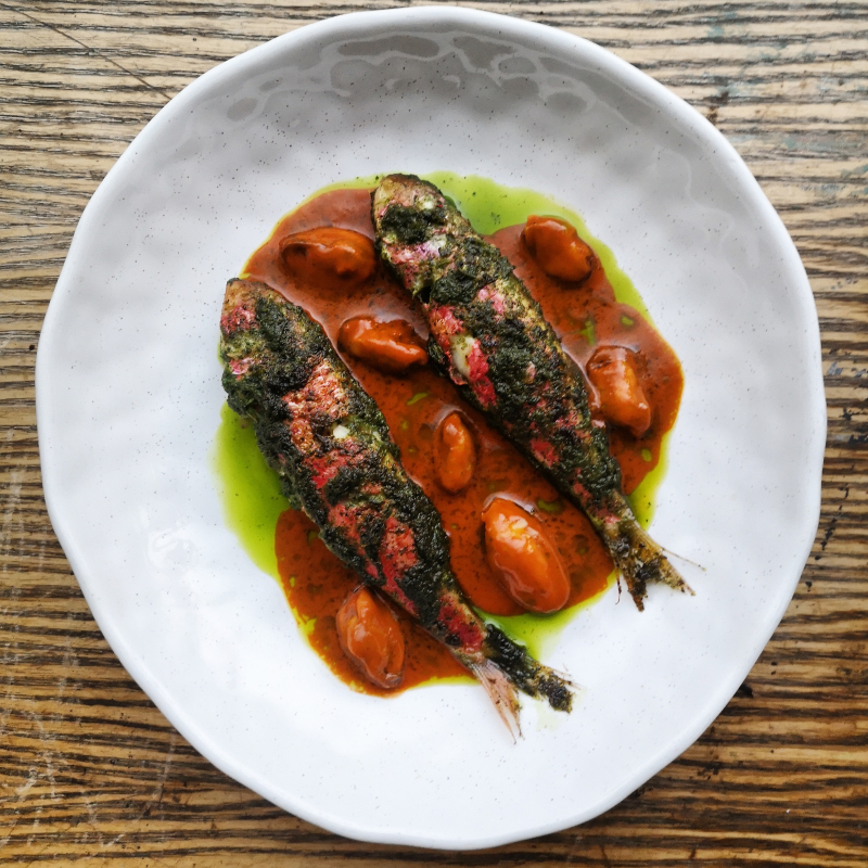 Grilled, marinated red mullet, smoked tomato, chilli and mussel sauce, parsley oil served with some fresh sourdough.