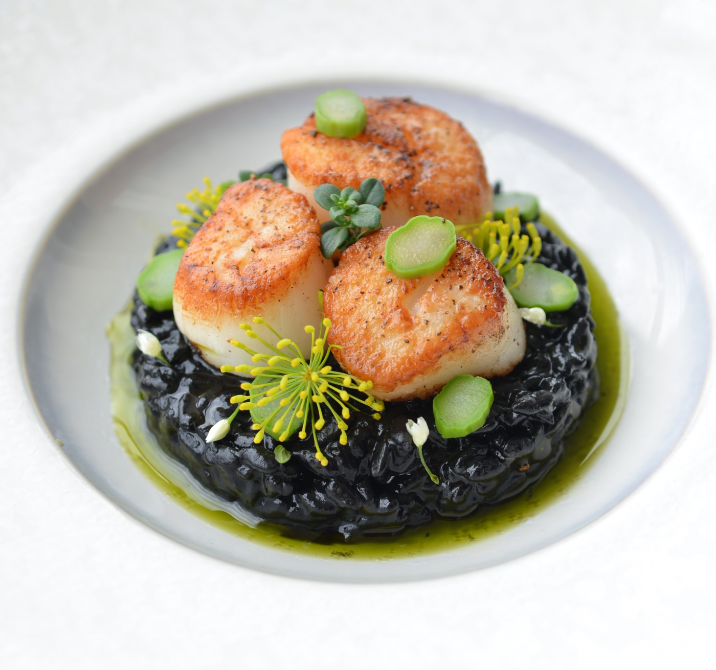 Black Ink Risotto with Scallops