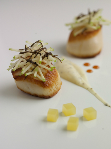 Seared Hand Dived Scallop Celeriac And Truffle Puree Granny Smiths Apple Caramel