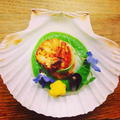 Seared scallop, pea puree, pickled cauliflower