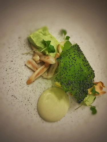 broccoli panna cotta, razor clams, poppy seeds, oyster emulsion