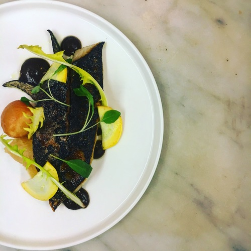 Charred mackerel, courgette, smoked eel doughnut, whey soured onions , fermented garlic