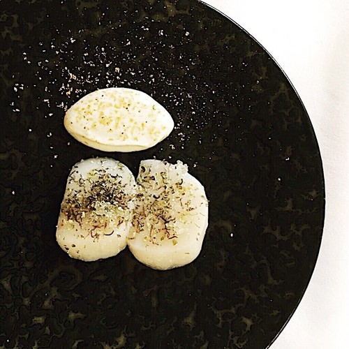 Russell Bateman's Diver Caught Scallops with Green Peppercorn, Finger Lime & Oyster Emulsion