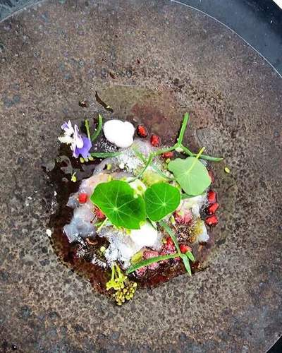 Raw bass, pommegranite, horseradish, fermented cucumber and forraged bits..