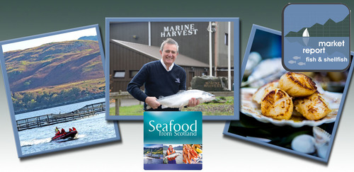 Seafood Seasonal update - December 2017