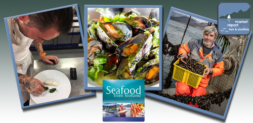 Seafood Seasonal update - January 2018