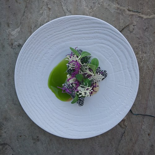 Oyster Foam|Pickled Russian Kale|Borage|Cuttlefish Cracker