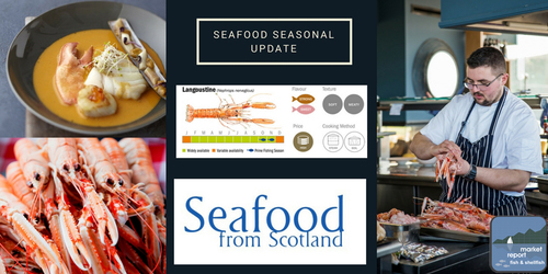 Seafood Seasonal update - March 2018