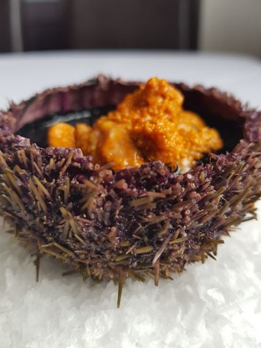 Sea Urchin, Ink Dashi, Asian Vegetables