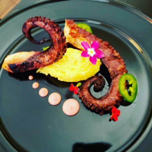Grilled octopus•parmesan polenta•hibiscus aioli•jalapeno•flowers