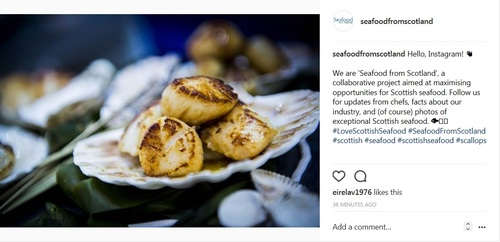 Seafood from Scotland on Instagram!