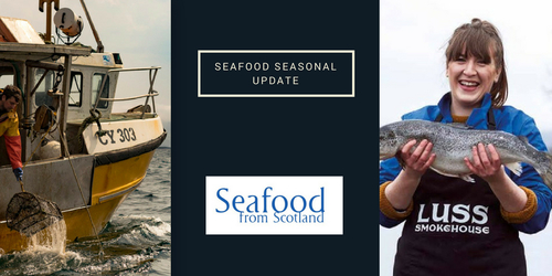 Seafood Seasonal update - June 2018