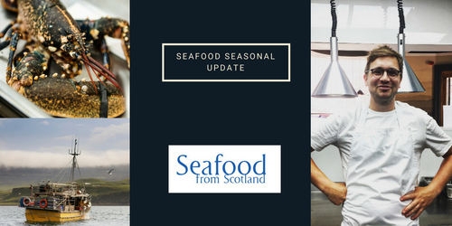 Seafood Seasonal update - July 2018