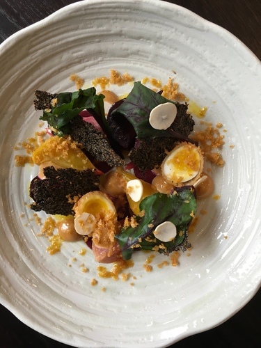 Beetroot, Quail Egg, Yeast and Quinoa