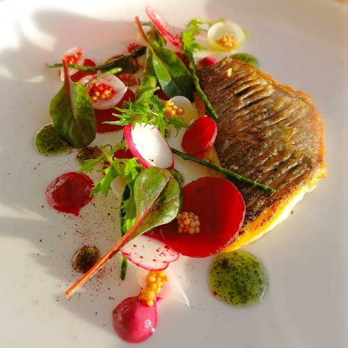Seabream/mint jelly/pickled beets/mustard..etc