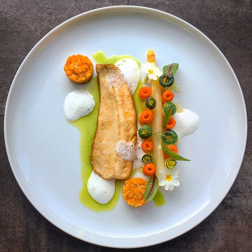 • rainbow trout roasted on the skin • red lentils • wild garlic oil • elderberry champagne foam • asparagus • vegetables with beurre noisettes •