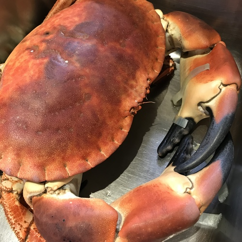 Here comes the crab!! Our Showcase Crab Menu will be available throughout the month of May, excluding Saturday nights. If you love this incredible ingredient as much as we do, don't miss out on 5 courses of heaven. https://www.parishouse.co.uk/menus/may-c