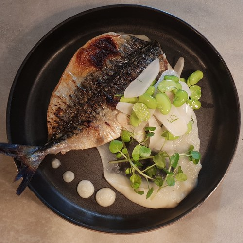 Cornish mackerel, pickled topinambur, broad beans, watercress