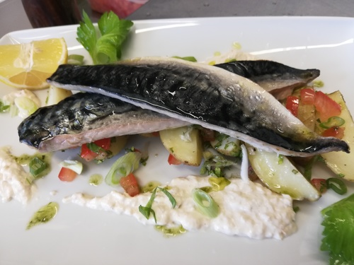 Baked fillet of mackerel, warm potato salat with  horseradish sauce