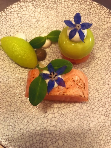 Salmon mi cuit, Apple, oyster, Yuzu dashi