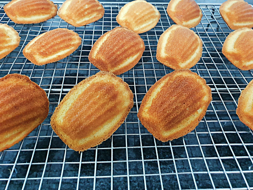 Something Satisfying About Making Madeleines 🤔