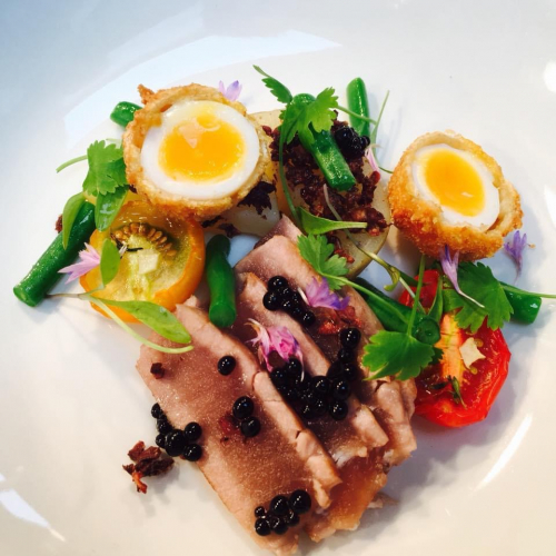 Tuna nicoise, soft crispy quail egg, green beans , jersey royals , olive powder, green beans, sun dried red and yellow cherry tomatoes, balsamic caviar