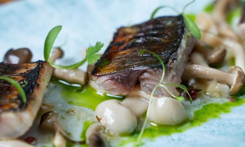 Mackerel Alimados with pickled Shamiji mushrooms & Herb oil