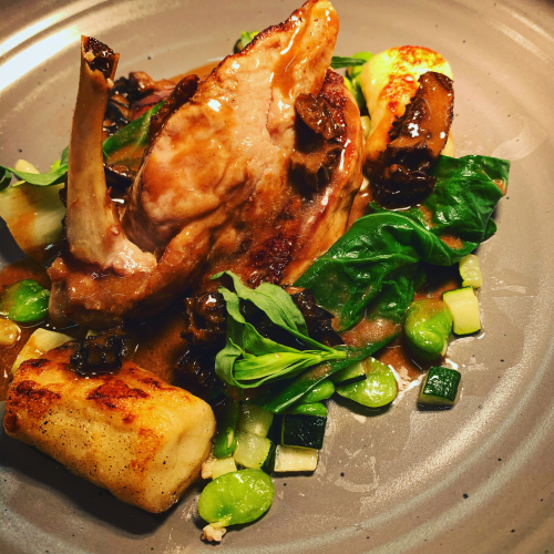 Guinea fowl breast, gnocchi, broad beans, morrel creamed sauce