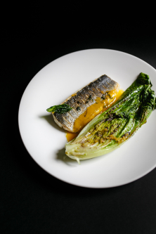 sea ​​bass / romaine / mango sauce
